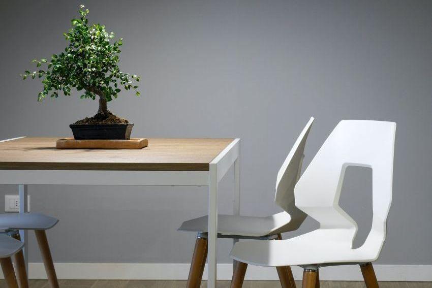 Je pohištvo iz masivnega lesa res boljše od ostalega?