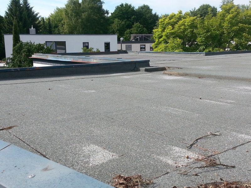 Ravna streha postaja čedalje bolj priljubljena tudi v Sloveniji